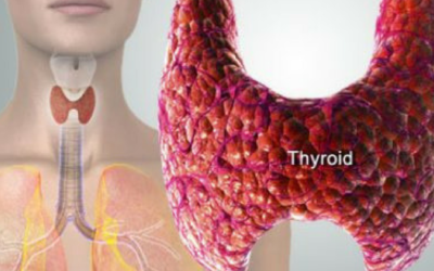 Thyroid Low? It May Be Sabotaging Your Results!